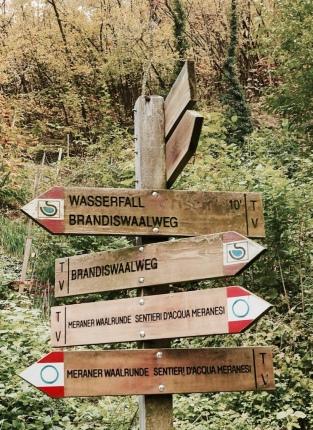 LanaBrandisWaalweg
