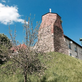 Burg in Wesenberg