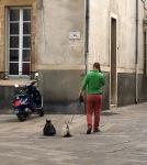 Dijon Local