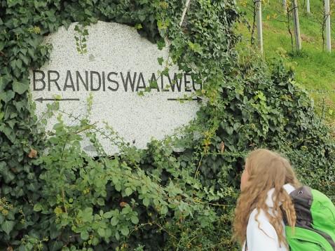 Brandiswaalweg