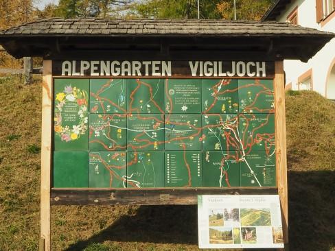 Alpengarten Vigljoch